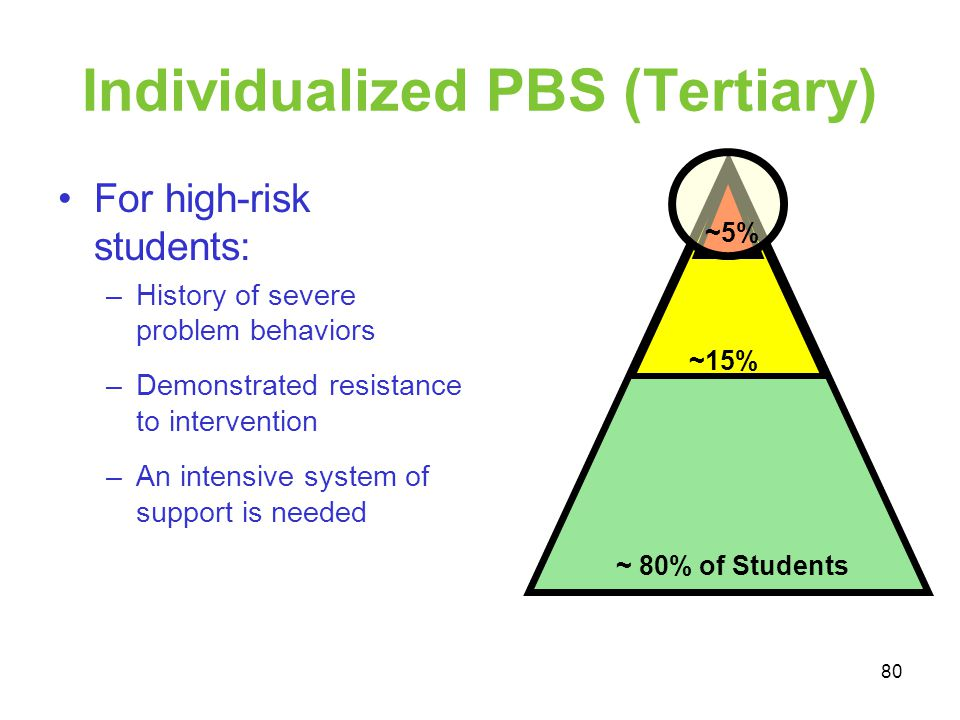 Individualized PBS (Tertiary)