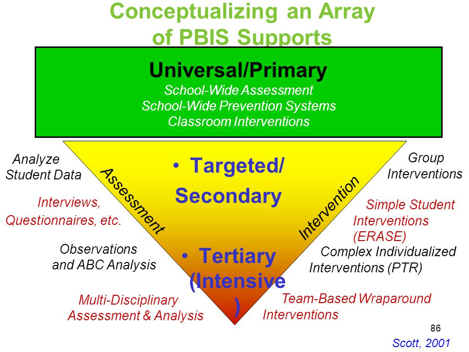 Conceptualizing an Array of PBIS Supports