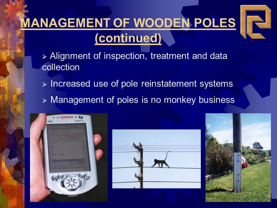 MANAGEMENT OF WOODEN POLES (continued)