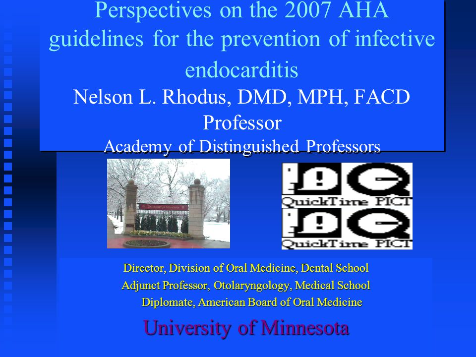 Perspectives on the 2007 AHA guidelines for the prevention of infective endocarditis Nelson L. Rhodus, DMD, MPH, FACD Professor Academy of Distinguished Professors