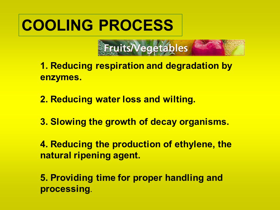 COOLING PROCESS 1. Reducing respiration and degradation by enzymes.
