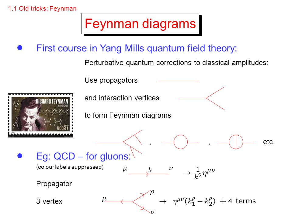 Feynman diagrams First course in Yang Mills quantum field theory: