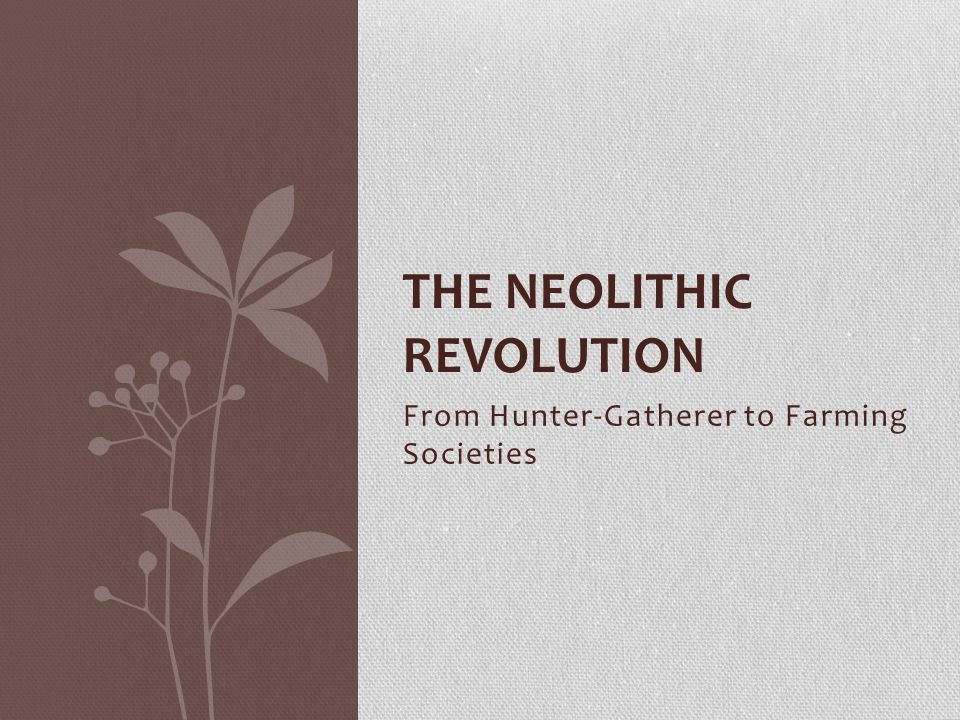 neolithic revolution and the writing system Prehistory and the neolithic revolution prehistory vs history prehistory - the time before human writing history - an interpretation of the record of human events study broad patterns, periods, cause and effect historians.