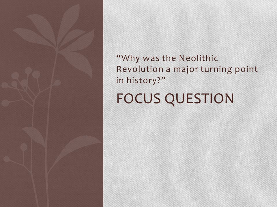 Why was the Neolithic Revolution a major turning point in history