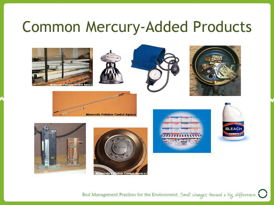 Common Mercury-Added Products