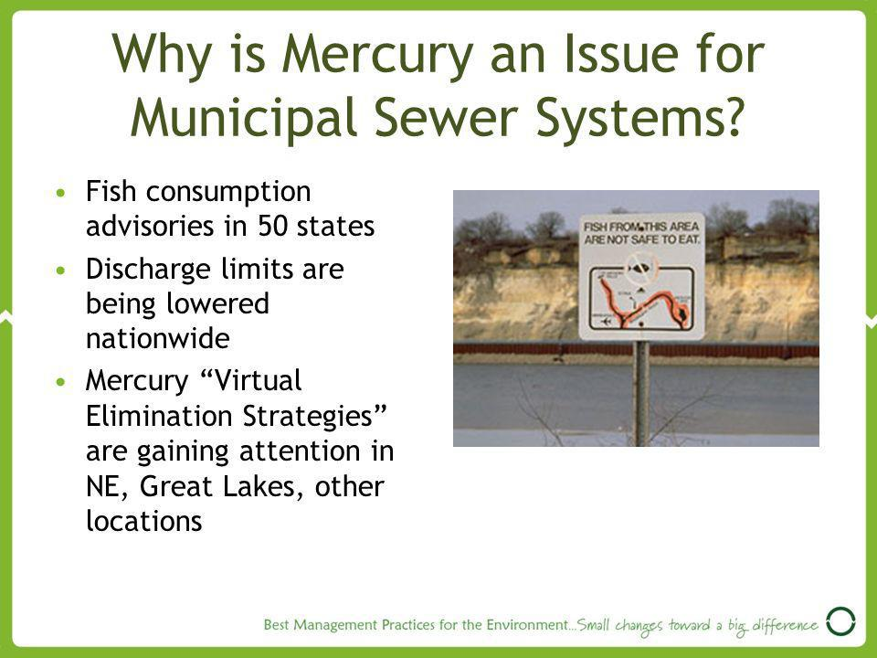 Why is Mercury an Issue for Municipal Sewer Systems