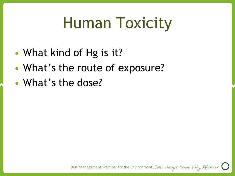 Human Toxicity What kind of Hg is it What's the route of exposure