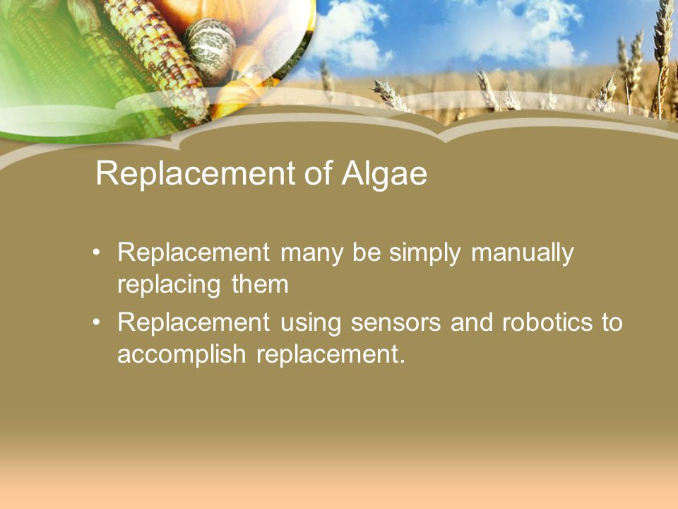 Replacement of Algae Replacement many be simply manually replacing them.