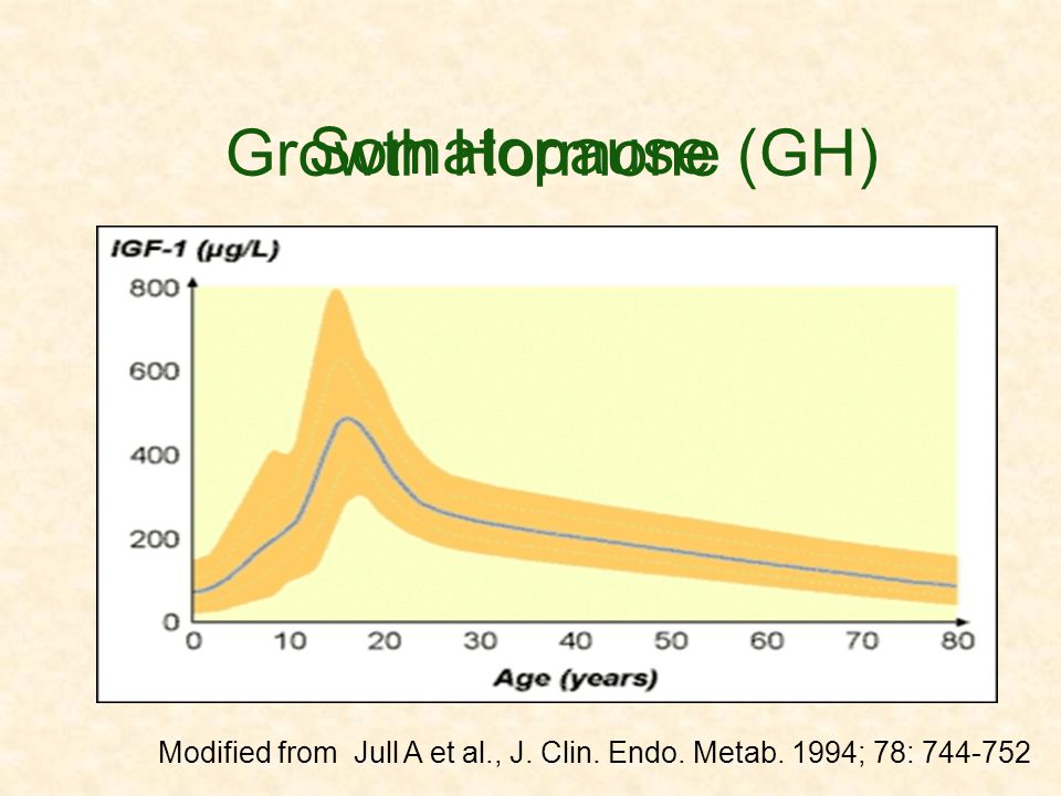 Somatopause Growth Hormone (GH)