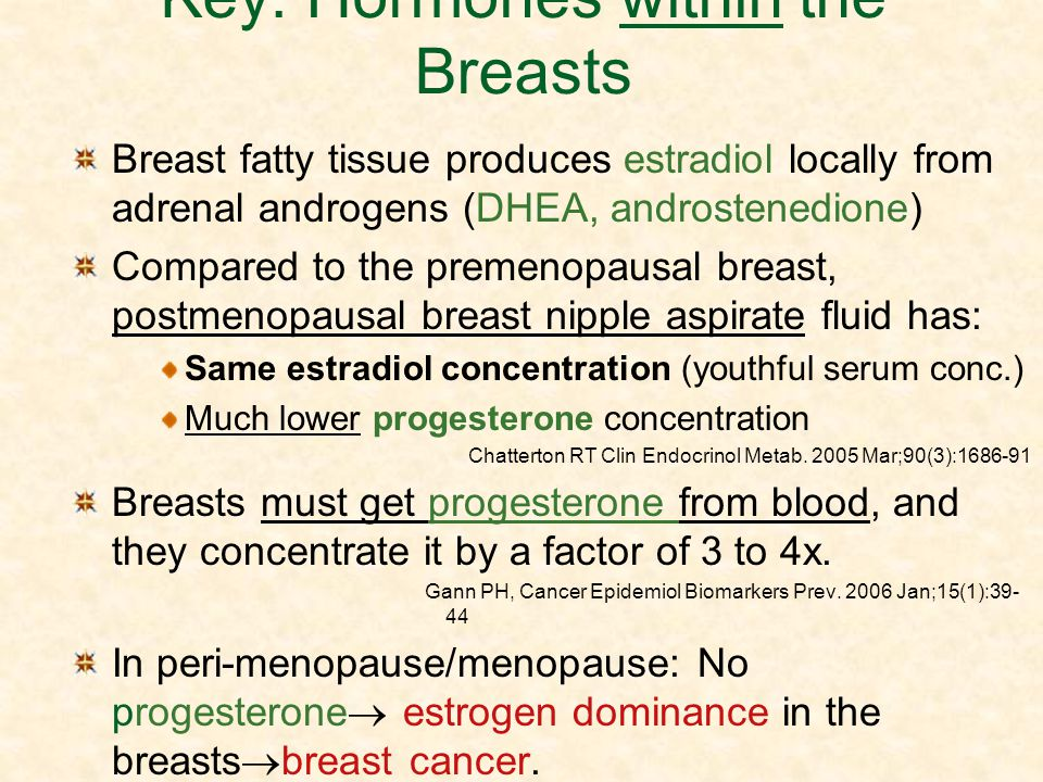 Key: Hormones within the Breasts
