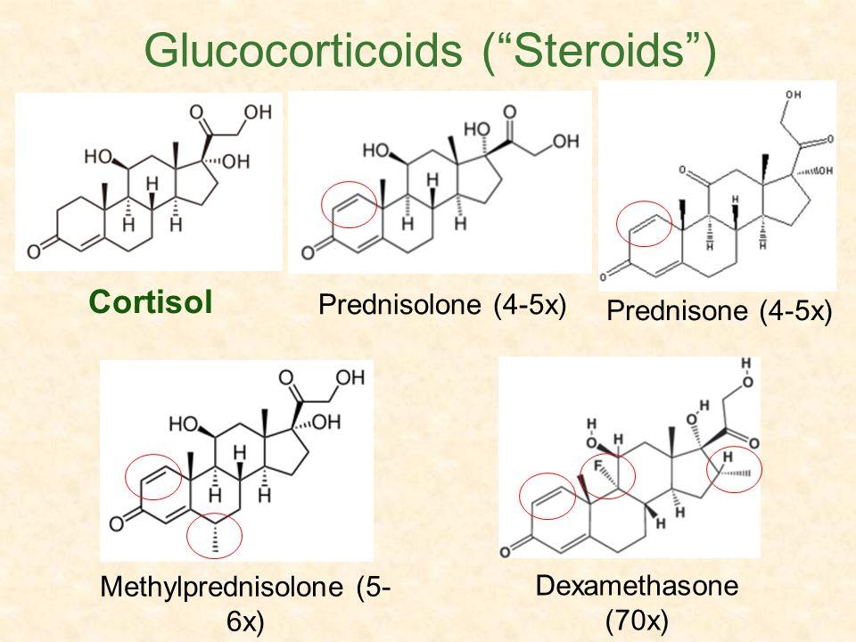 Glucocorticoids ( Steroids )