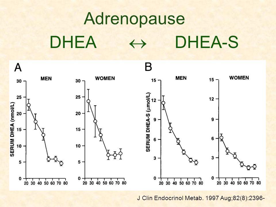 Adrenopause DHEA  DHEA-S