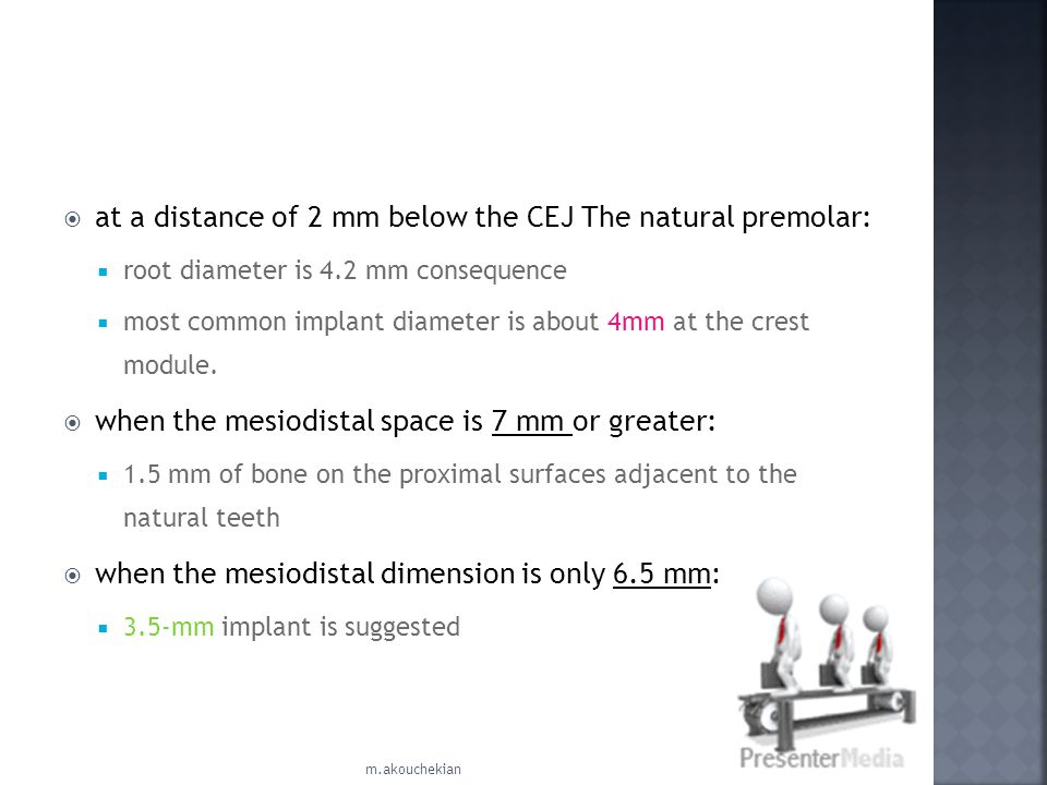 at a distance of 2 mm below the CEJ The natural premolar: