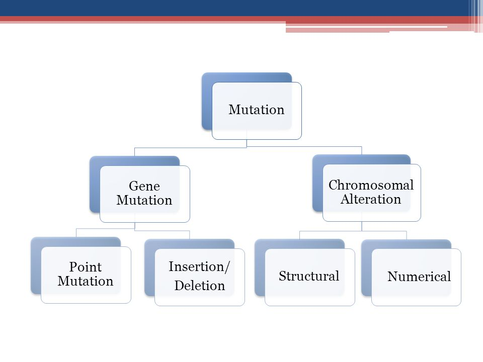 Chromosomal Alteration
