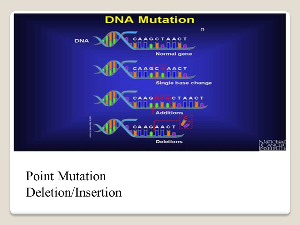 Point Mutation Deletion/Insertion