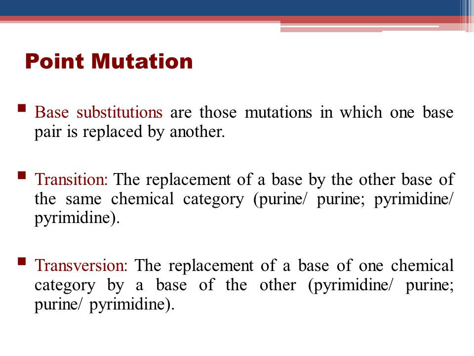 Point Mutation Base substitutions are those mutations in which one base pair is replaced by another.