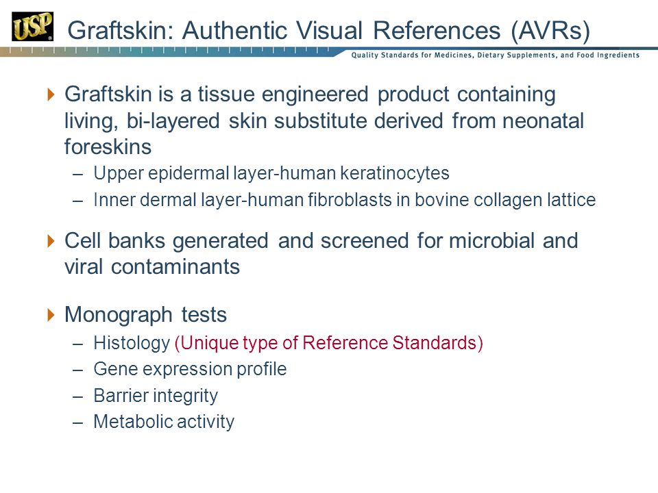 Graftskin: Authentic Visual References (AVRs)
