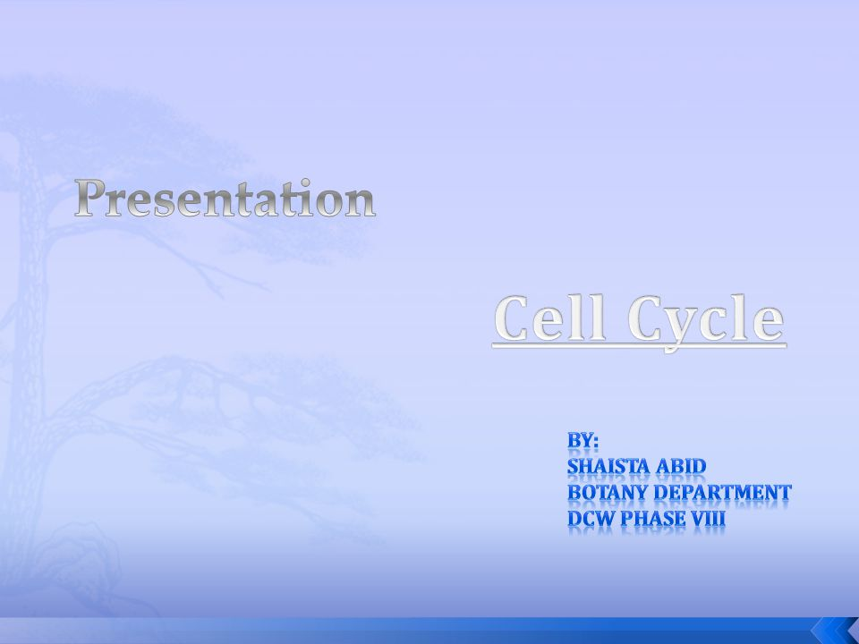 Cell Cycle Presentation By: Shaista Abid Botany department