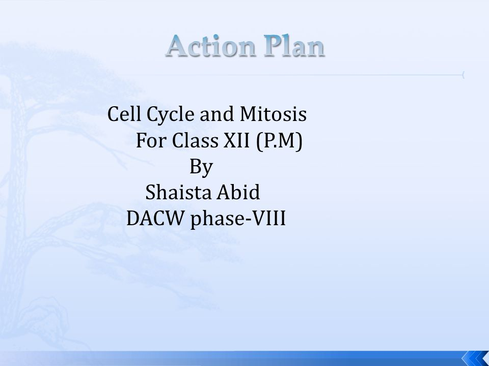 Action Plan Cell Cycle and Mitosis For Class XII (P.M) By Shaista Abid