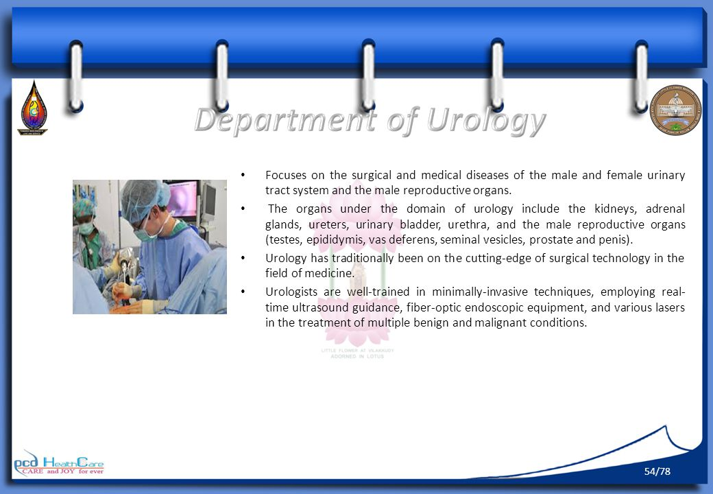 Department of Urology Focuses on the surgical and medical diseases of the male and female urinary tract system and the male reproductive organs.