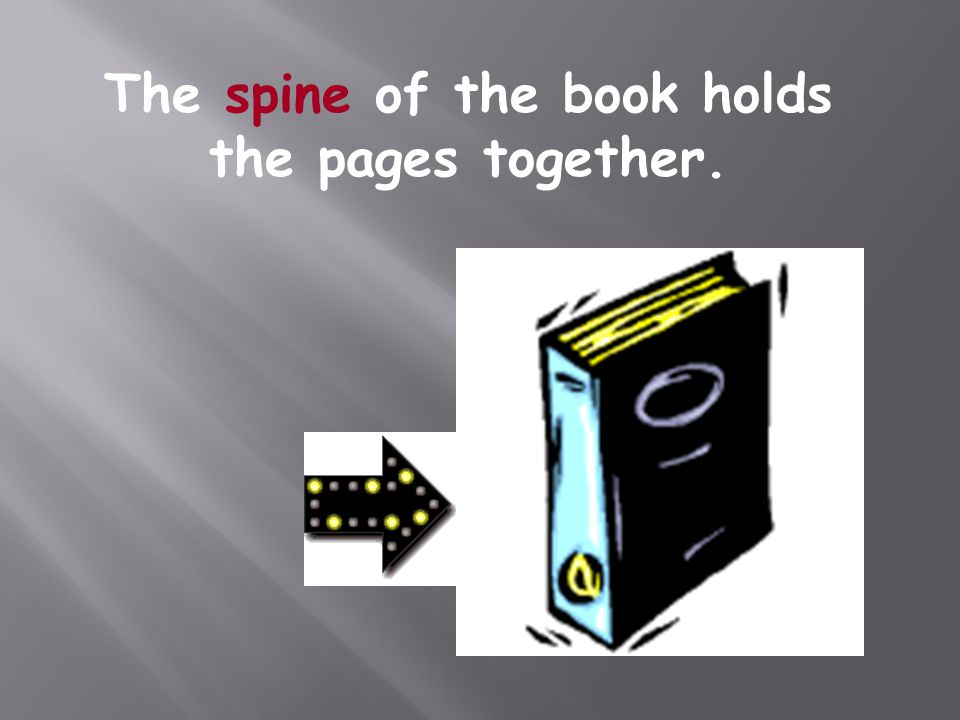 The spine of the book holds the pages together.
