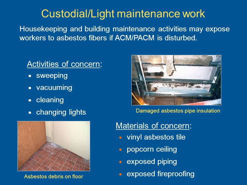 Custodial/Light maintenance work