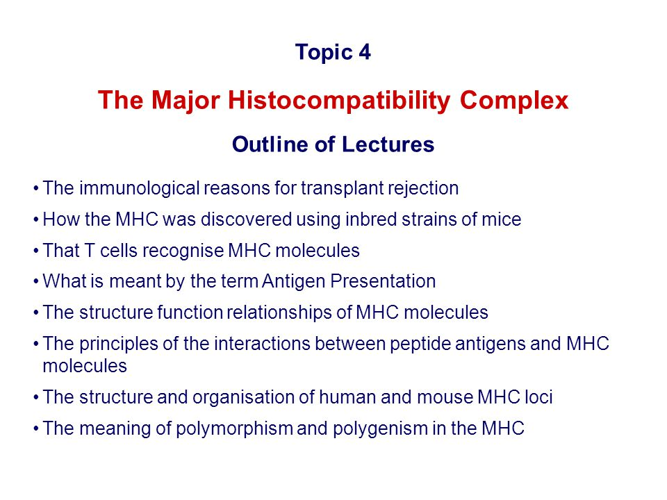 The Major Histocompatibility Complex