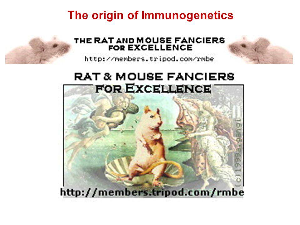 The origin of Immunogenetics