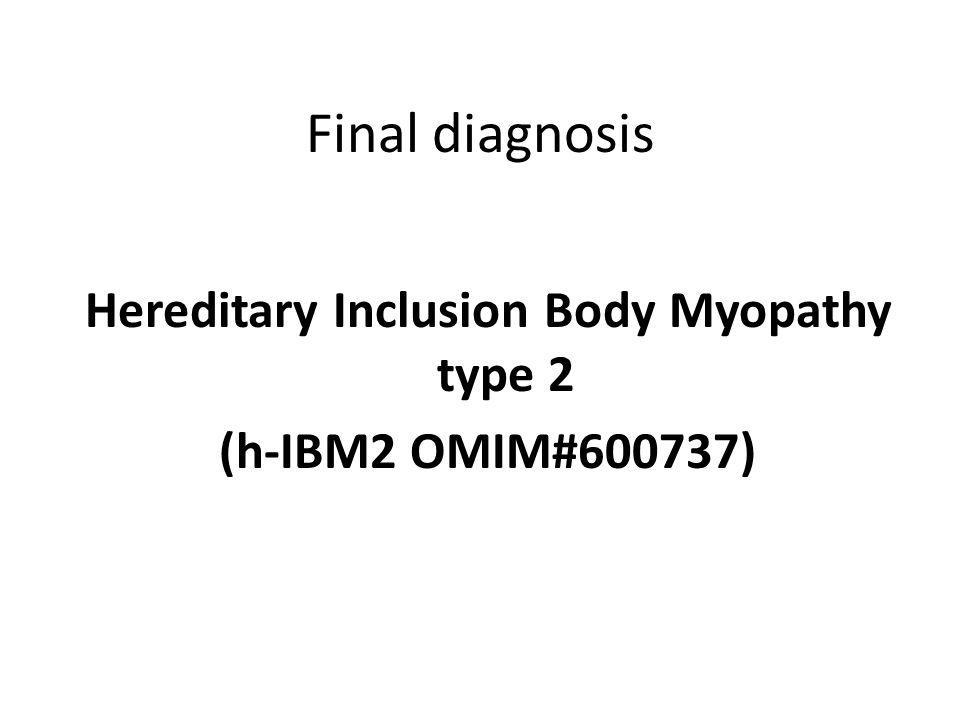 Hereditary Inclusion Body Myopathy type 2 (h-IBM2 OMIM#600737)