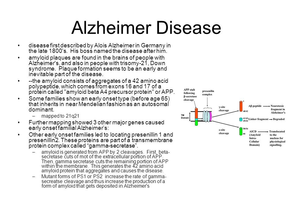 Alzheimer Disease disease first described by Alois Alzheimer in Germany in the late 1800 s. His boss named the disease after him.