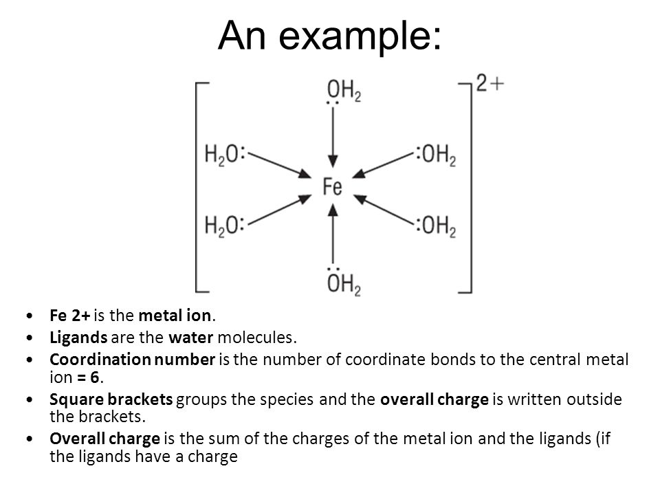 An example: Fe 2+ is the metal ion. Ligands are the water molecules.