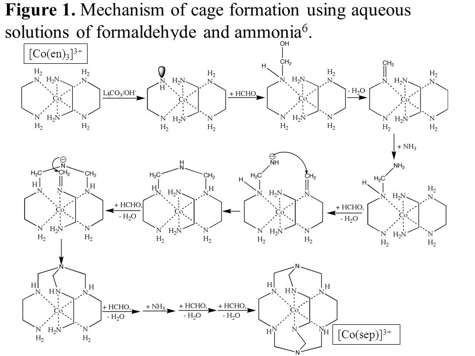 Figure 1. Mechanism of cage formation using aqueous solutions of formaldehyde and ammonia6.