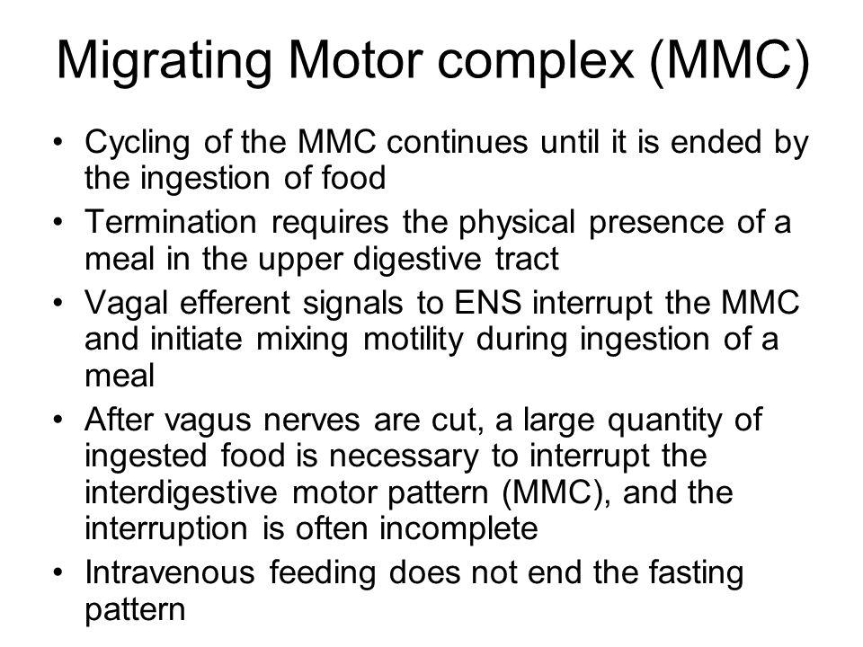 Migrating Motor complex (MMC)