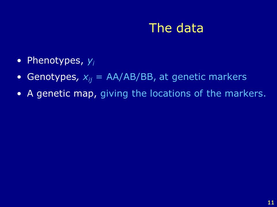 The data Phenotypes, yi Genotypes, xij = AA/AB/BB, at genetic markers