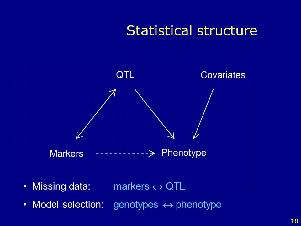 Statistical structure
