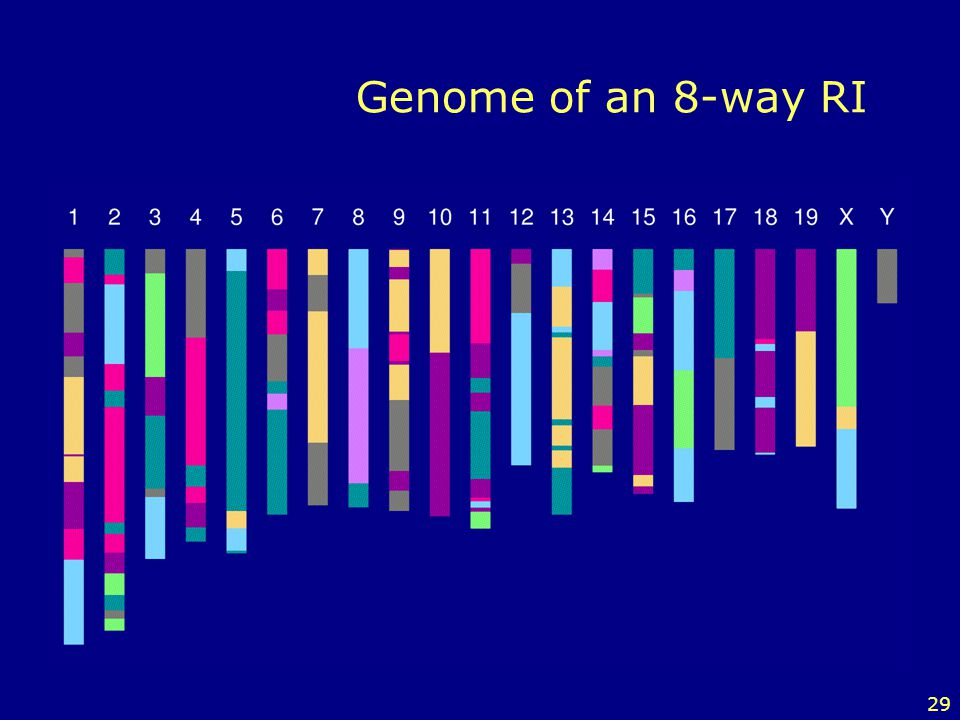 Genome of an 8-way RI