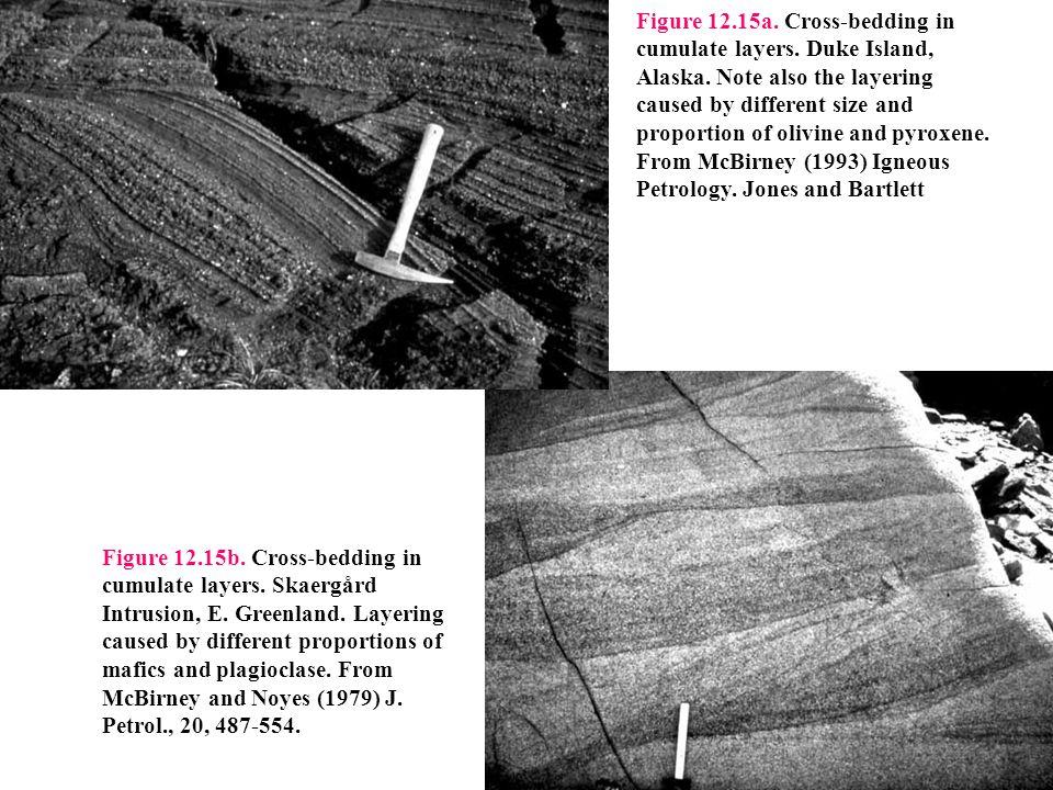 Figure 12. 15a. Cross-bedding in cumulate layers. Duke Island, Alaska