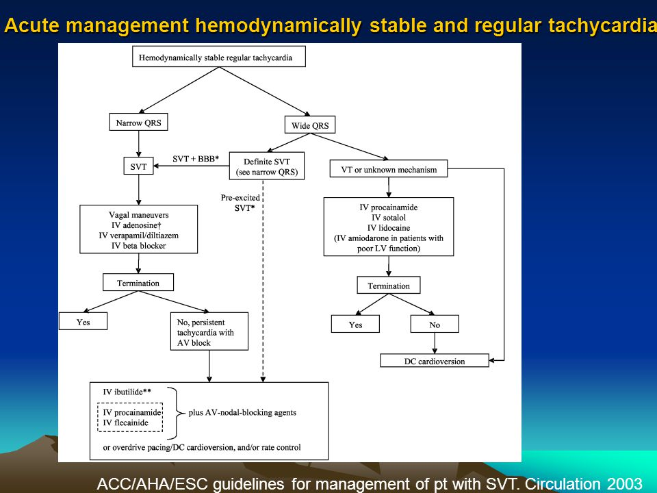 Acute management hemodynamically stable and regular tachycardia