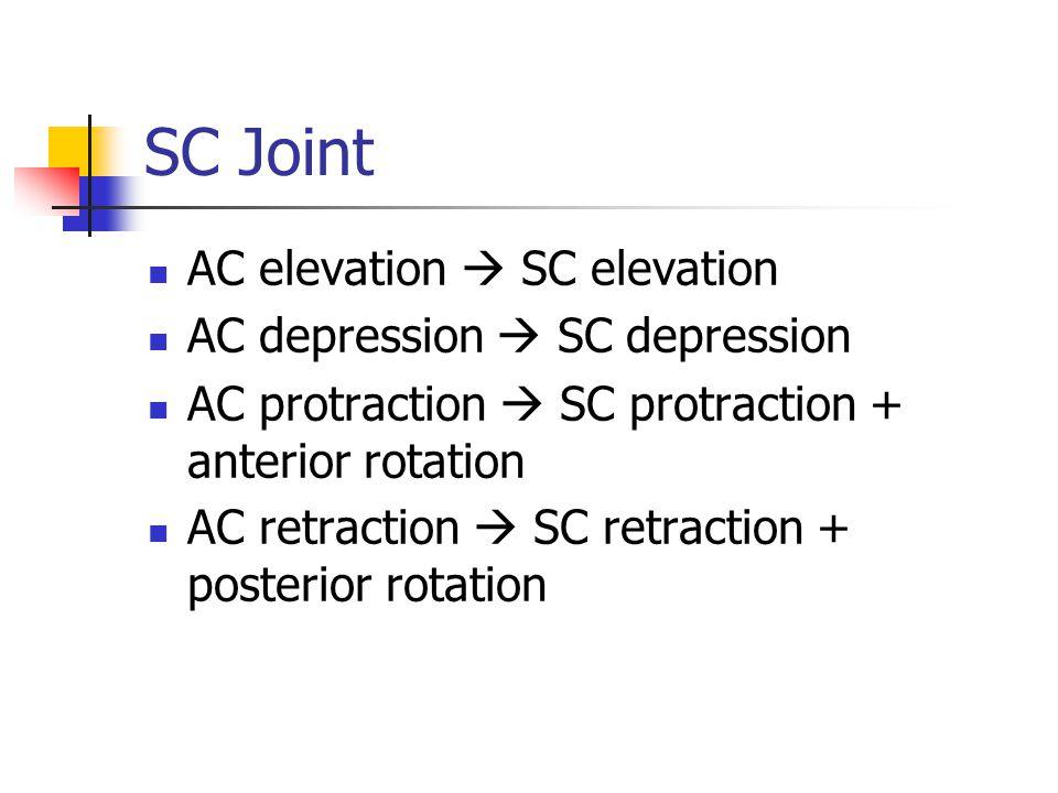 SC Joint AC elevation  SC elevation AC depression  SC depression