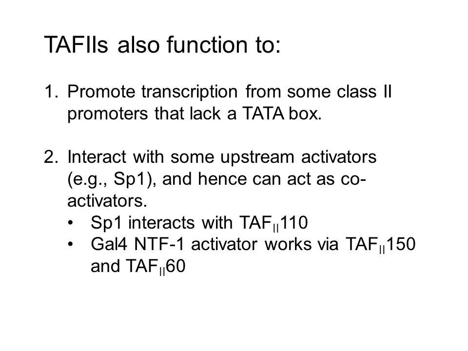TAFIIs also function to: