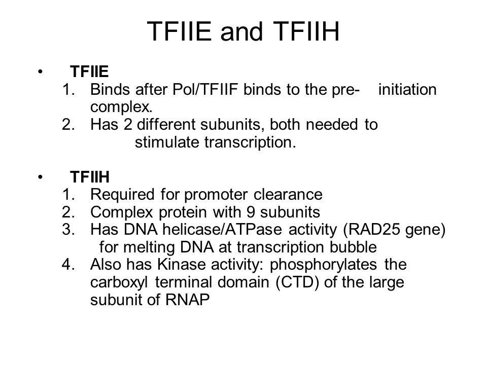 TFIIE and TFIIH TFIIE. Binds after Pol/TFIIF binds to the pre- initiation complex.