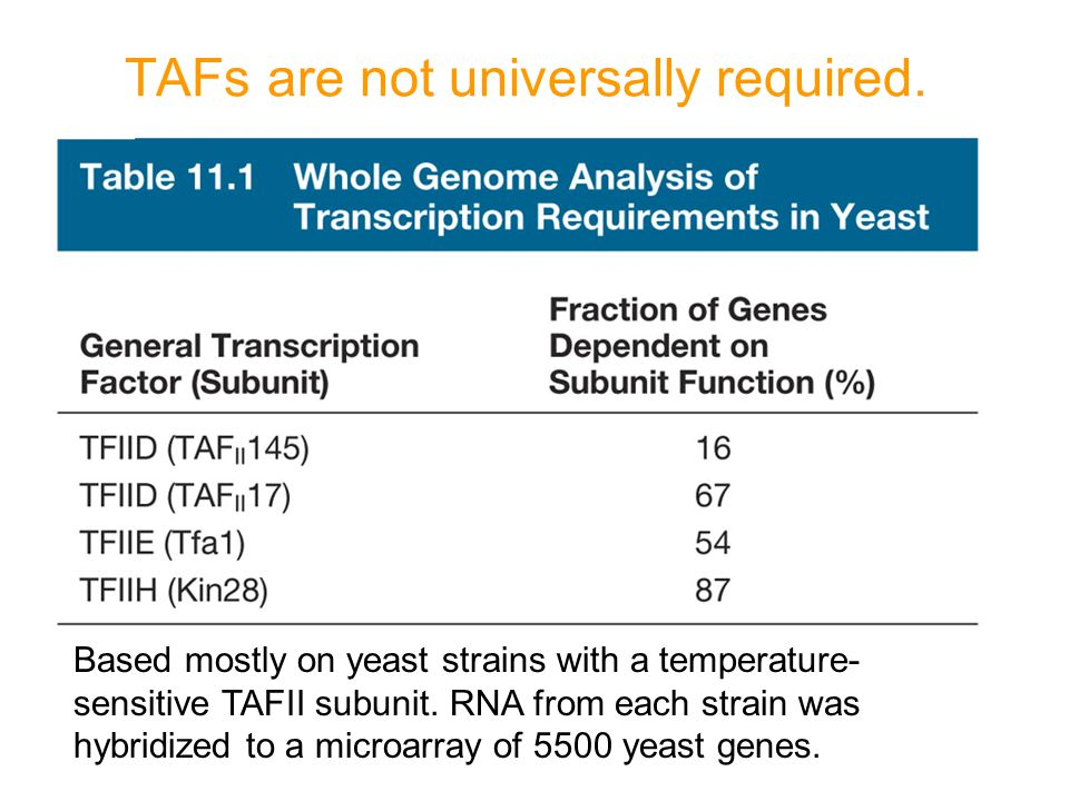 TAFs are not universally required.