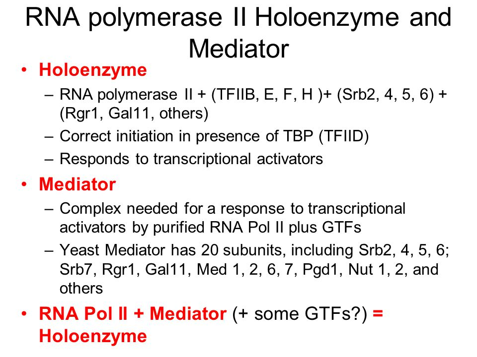 RNA polymerase II Holoenzyme and Mediator