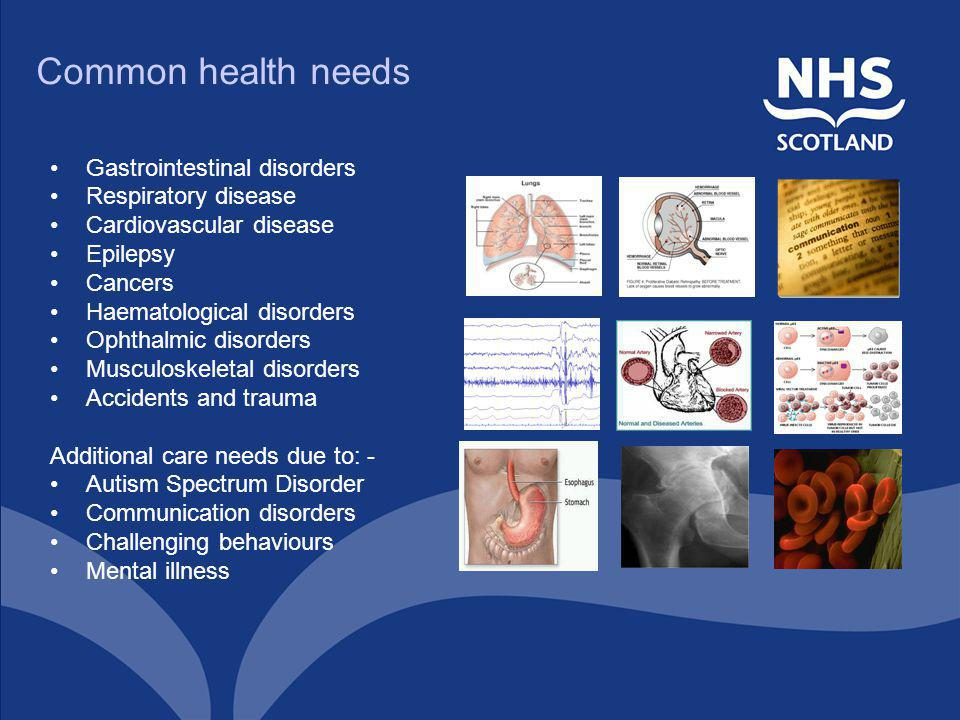 Common health needs Gastrointestinal disorders Respiratory disease