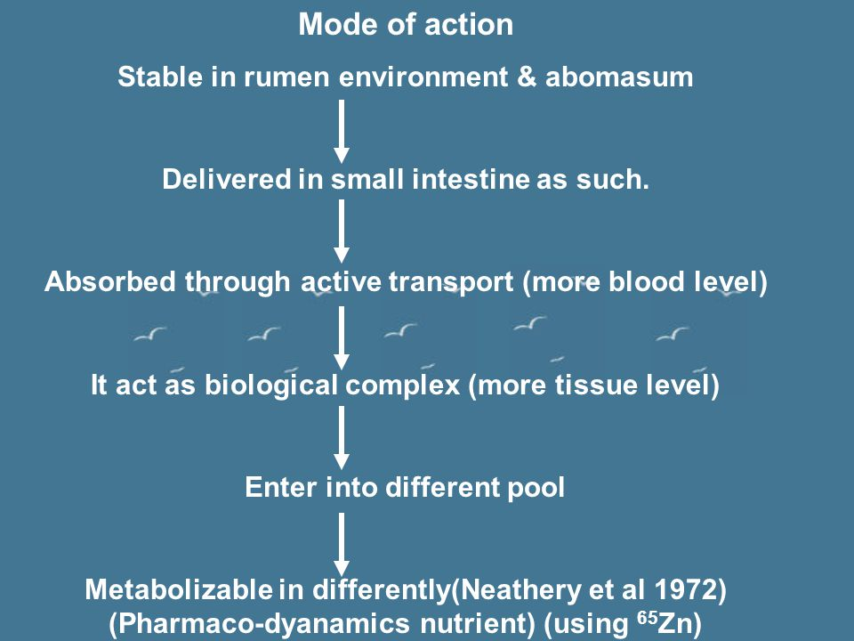 Mode of action Stable in rumen environment & abomasum