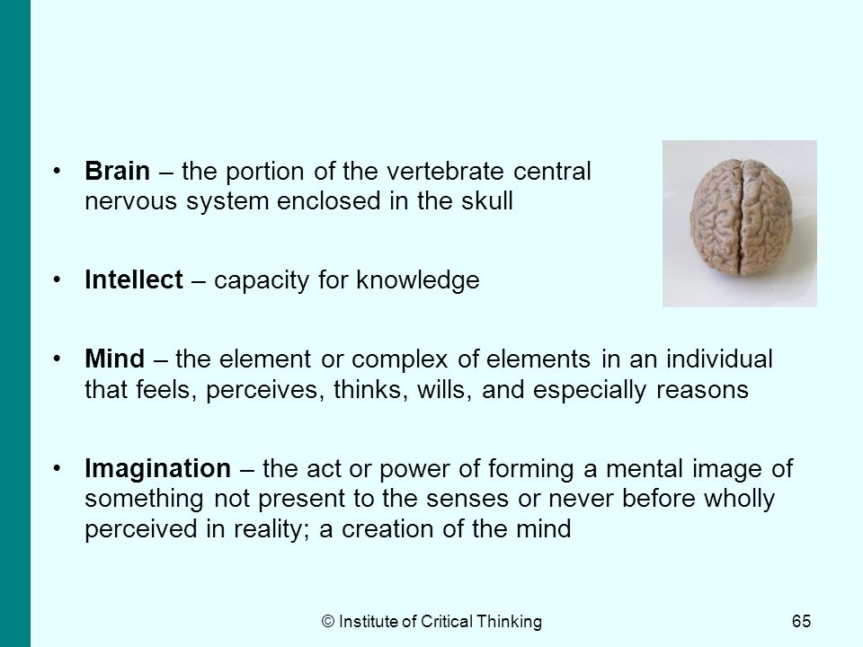 © Institute of Critical Thinking