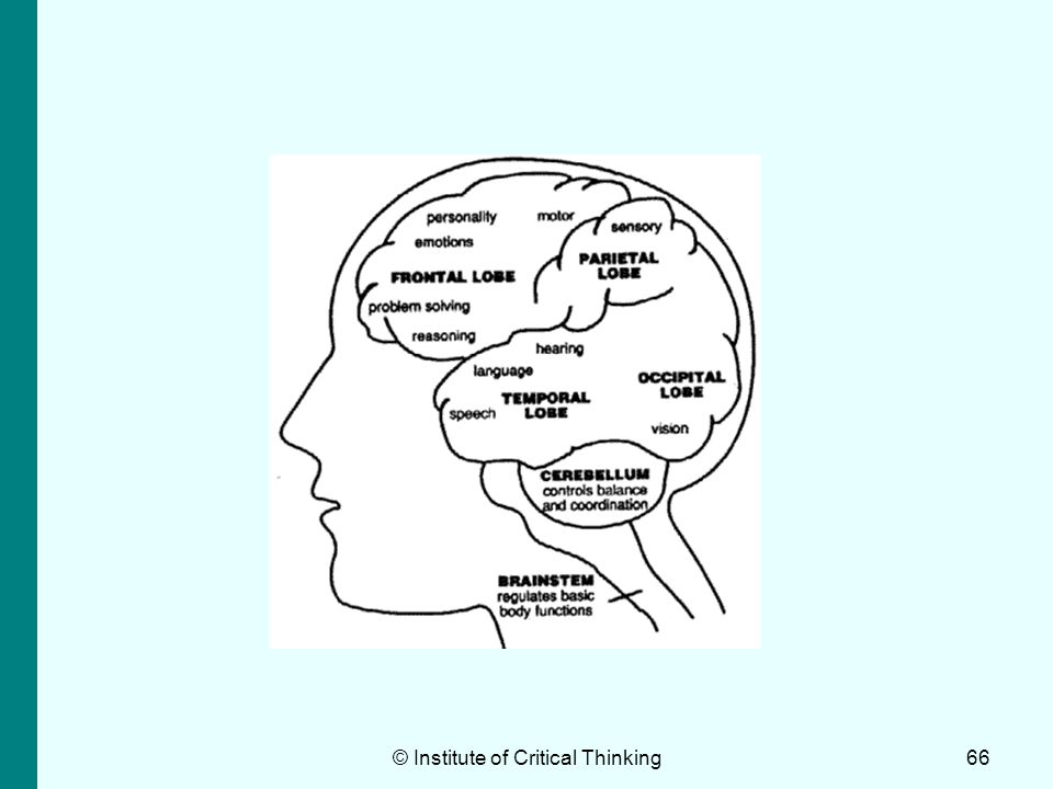 critical and creative thinking skills ppt Students need to develop and effectively apply critical thinking skills to their academic studies, to the complex.