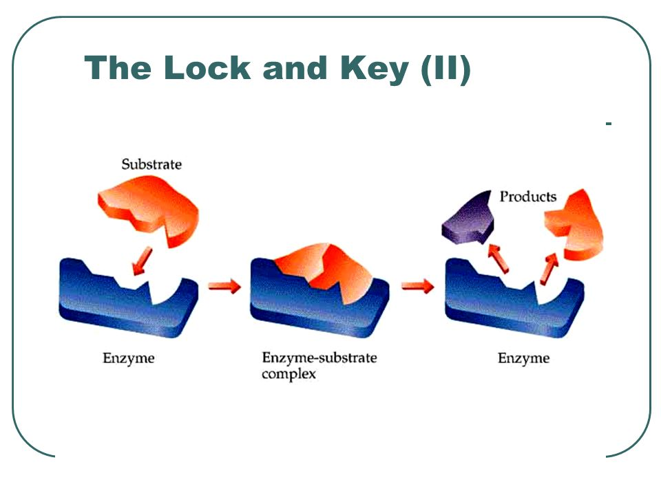 The Lock and Key (II)