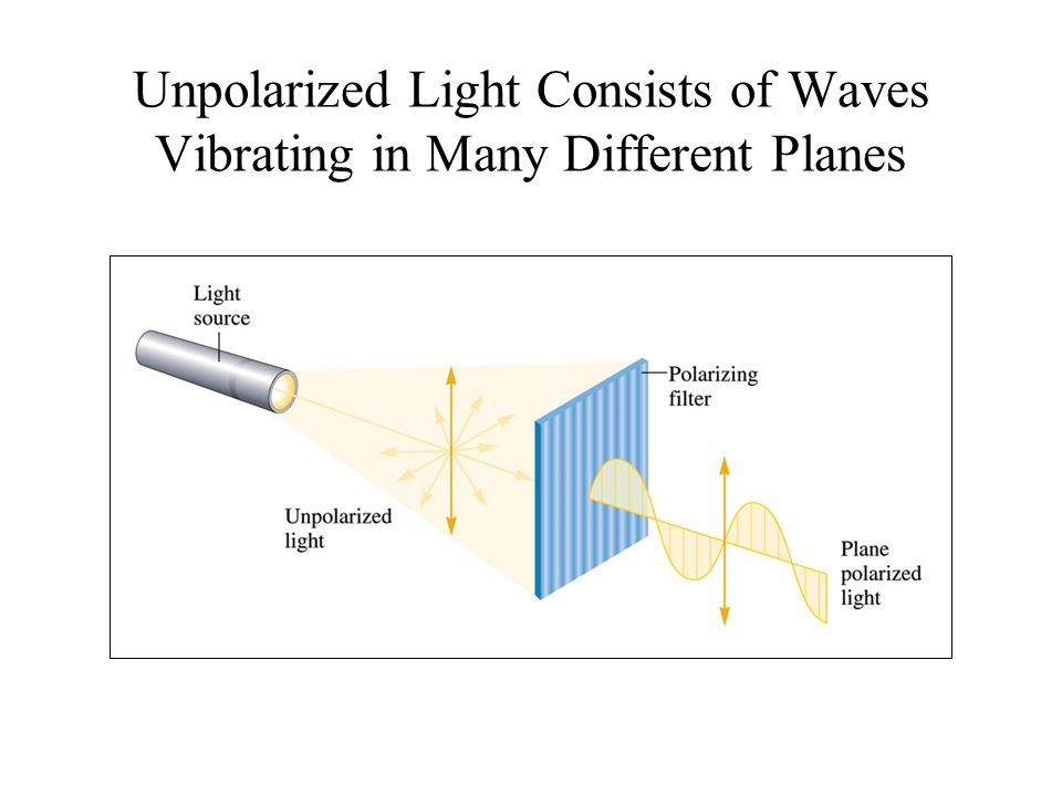Unpolarized Light Consists of Waves Vibrating in Many Different Planes