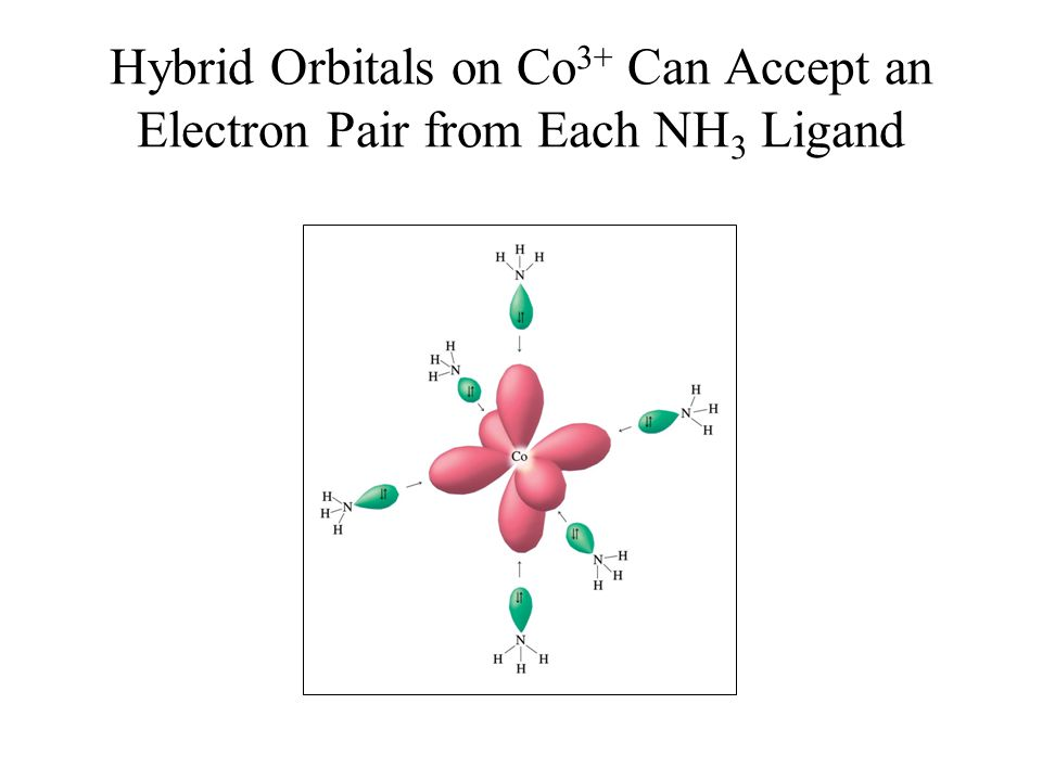 Hybrid Orbitals on Co3+ Can Accept an Electron Pair from Each NH3 Ligand